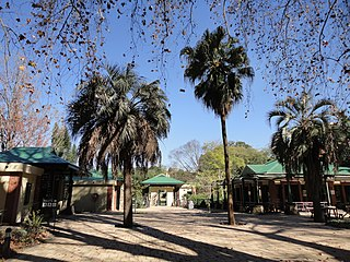 KwaZulu-Natal National Botanical Garden Botanical garden in Pietermaritzburg, South Africa