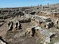 P1080386 Ruinas Conimbriga (Condeixa-a-Nova).jpg