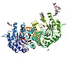 PBB Protein GLA image.jpg