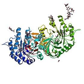 Px Pbb Protein Gla Image