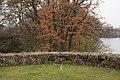 PM 114138 B Ieper.jpg