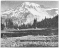 PSM V80 D537 Paradise park and mount rainier.png