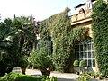 Palazzo budini gattai grifoni, giardino 04.JPG
