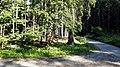 Památník knížete nad Dobronicemi (Q80455722) 01.jpg