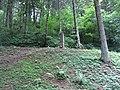 Paneriai, Vilnius, Lithuania - panoramio (69).jpg