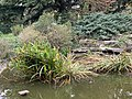 Parc Olympiades Fontenay Bois 7.jpg