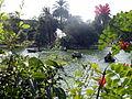 Parque Jardín de la Ciudadela , lago con barcas, Barcelona.JPG