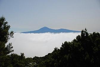 Parque Nacional del Teide (Tenerife).jpg