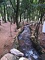 Parque da Cidade - Jundiaí - panoramio (98).jpg