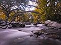 Pasonanca Natural Park.jpg