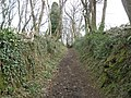Path, to Heaven's Gate - geograph.org.uk - 1195082.jpg