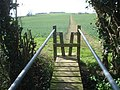 Path to Whittocks End crosses the Daffodil Way - geograph.org.uk - 769876.jpg