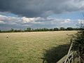 Pebworth Pasture - geograph.org.uk - 55855.jpg