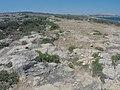 Pembroke, Malta - panoramio (46).jpg