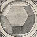 Perspectiva Corporum Regularium 15a.jpg