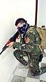 Peshmerga Kurdish Army (15014752338).jpg