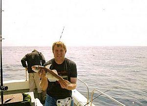 Peter van der Sluijs caught large haddock to a fishing rod in Ireland.jpg