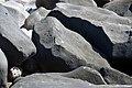 Petroglifos de Las Labradas 03.jpg