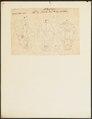 Phoca leonina - schedel - 1700-1880 - Print - Iconographia Zoologica - Special Collections University of Amsterdam - UBA01 IZ21100047.tif