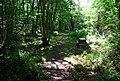 Picnic tables, Oldbury Woods - geograph.org.uk - 856729.jpg