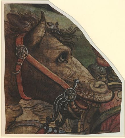 Head of a Horse, fragment of a tapestry design Pieter Coecke van Aelst I or workshop - Head of a Horse.jpg