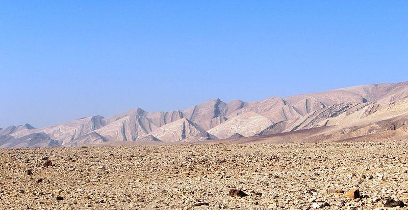 הר כרבולת