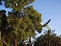 PikiWiki Israel 8112 arkia plane landing in eilat.jpg