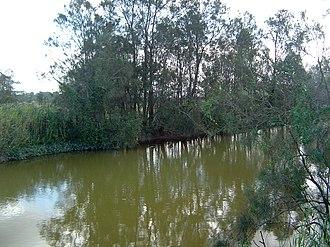 Pimpama River - Image: Pimpama River 2
