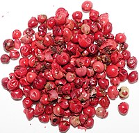 Pink peppercorn.jpg