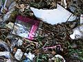 Plastic and Styrofoam Contamination in Municipal Compost.jpg