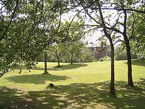 Rusholme - A view of Platt Fields Park
