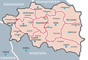 Polesie Voivodeship - Administrative division of the voivodeship. In 1930, Sarny county (lower right) became part of the Volhynian Voivodeship.