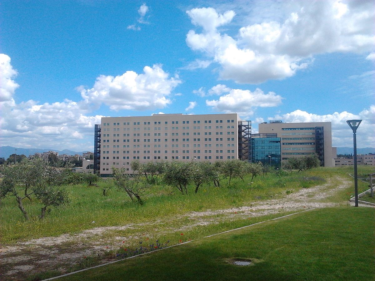 Universit degli studi di roma tor vergata wikipedia for Elenco studi di architettura roma