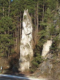 Poluvsianska skalna ihla.jpg