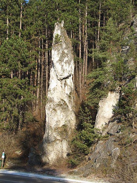 Poluvsianska skalná ihla