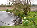 Pond at Wyphurst Home Farm - geograph.org.uk - 1775043.jpg