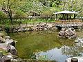 Pond in the Matsugaoka Park, Iwaki City.jpg