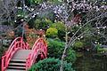 Pont de la Lune, jardin japonais, Toulouse.JPG