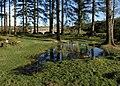 Pool, Bellever - geograph.org.uk - 1590172.jpg