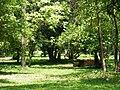 Pool -Si Satchanalai historical park.jpg