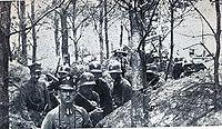 Powstanie wielkopolskie 1919.jpg