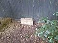Predator Free New Zealand rat trap and tunnel.jpg