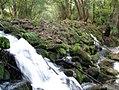 Presilla natural del río Támega.jpg