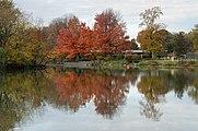 Prospect Park New York October 2015 004.jpg