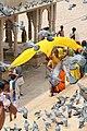 Pushkar (8043104055).jpg