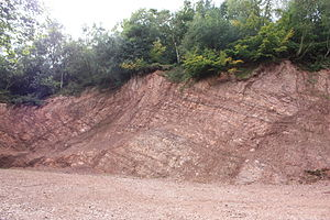 Lickey Hills - A quarry cutting on Bilberry Hill showing the layers of Lickey Quartzite