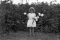 Queensland State Archives 5343 Girl in cotton plantation Central Queensland c 1931.png