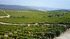 Quevedo vineyards toward the Douro River, Portugal.jpg