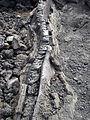 Réunion Piton de la Fournaise Lavatunnel.jpg