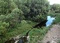 Río Laja a su paso por Dolores Hidalgo, Guanajuato.jpg